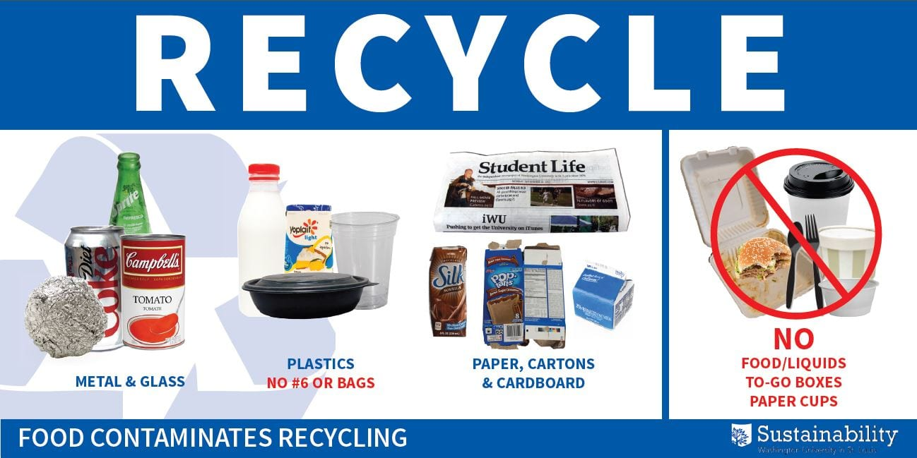 Recycle Food Contaminates Poster