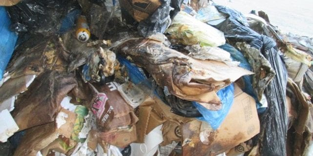 food contamination in recycling 2