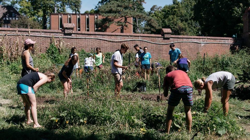 Summer Garden Membership at the On-Campus Burning Kumquat
