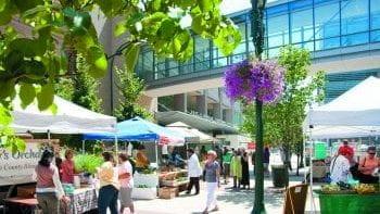 Farmer's Market and CSA