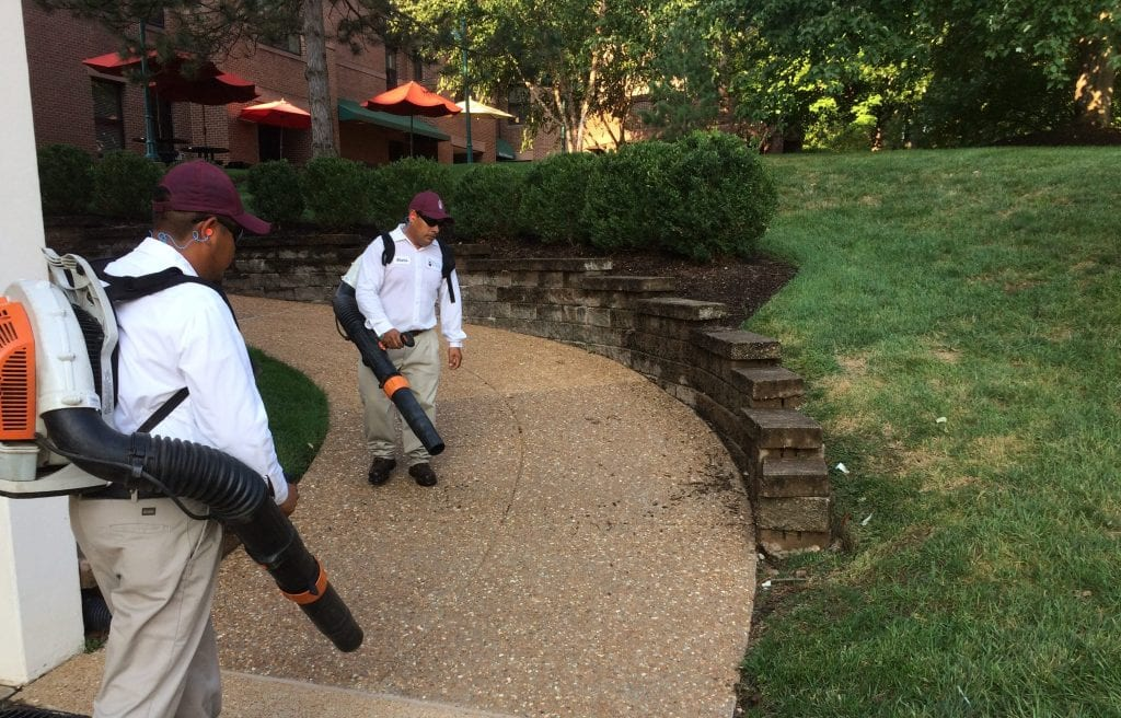Turning Over a New Leaf: Leaf Blowers and Lawn Mowers