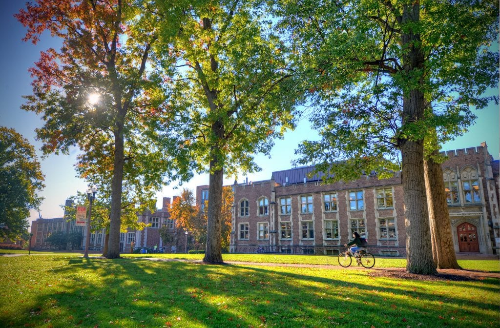 New Resources Unveiled to Honor Danforth Campus Trees
