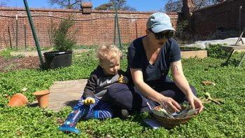 Burning Kumquat Garden Thrives While Students Away