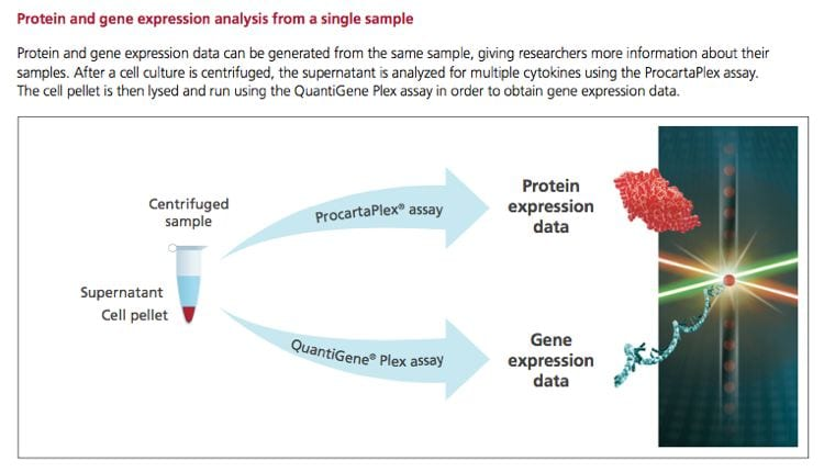 Luminex protein and gene expression analysis from a single sample