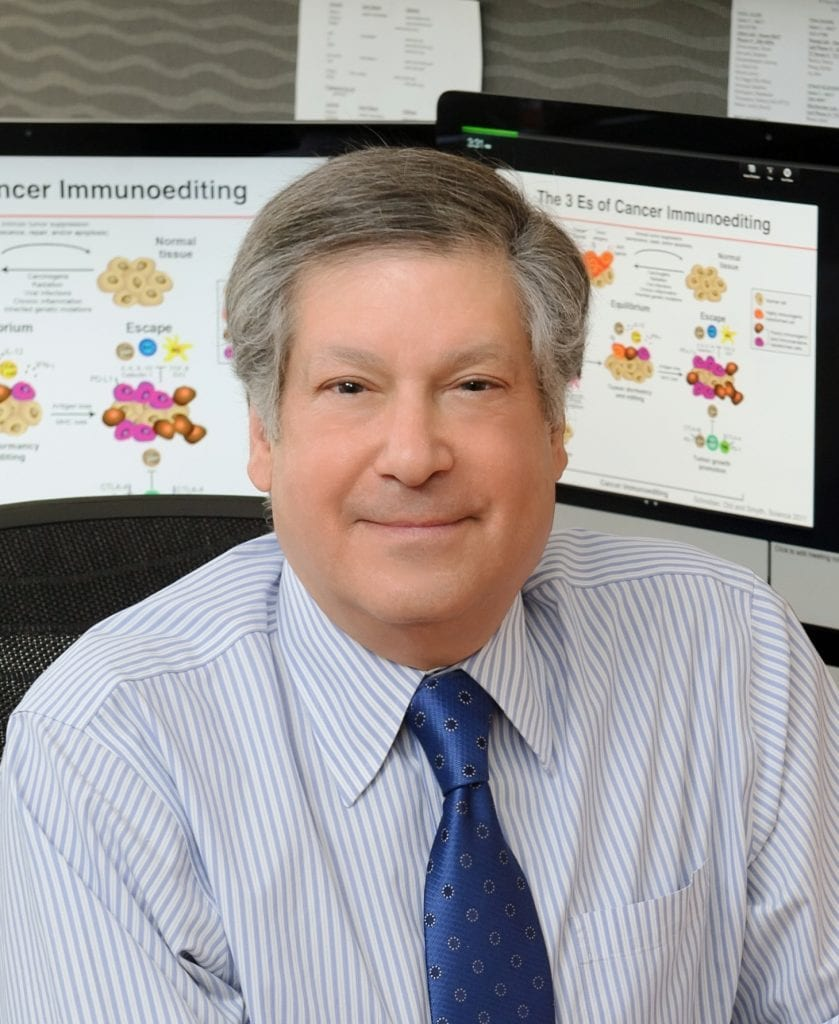 Schreiber awarded Balzan Prize for pioneering cancer research