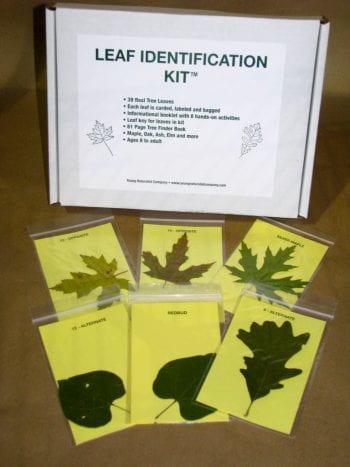 ISP100-9965-Leaf-Identification-Kit-768x1024