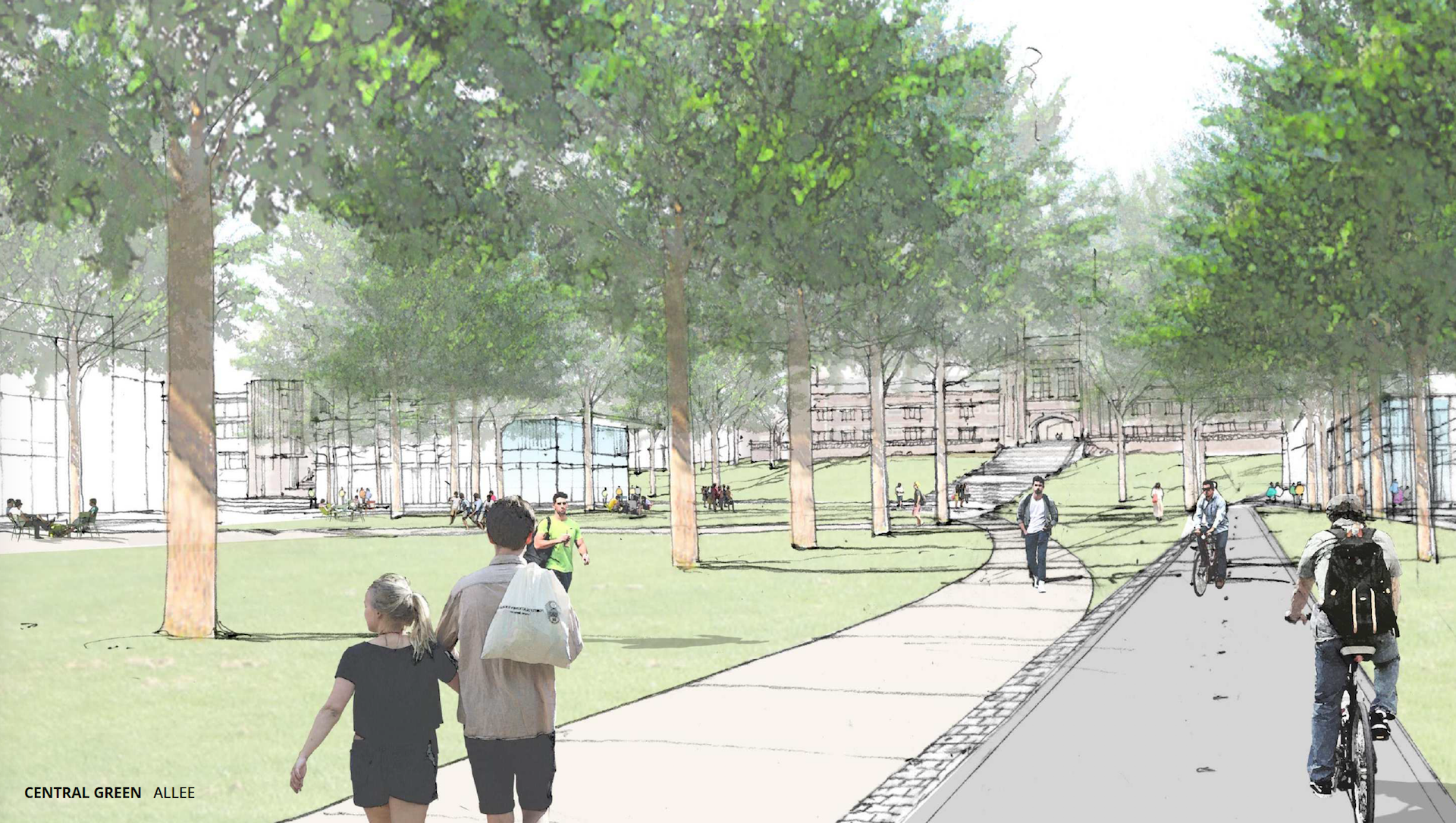 Rendering showing pedestrian and bike corridors on the campus of Washington University in St. Louis