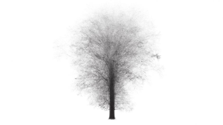 black and white laser images of trees superimposed on one another