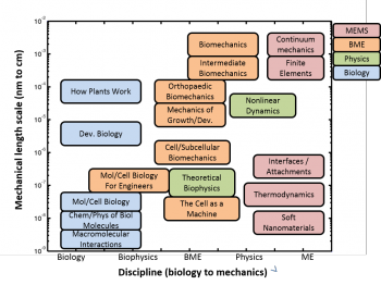 Interdisciplinary Course Diagram