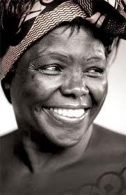 Wangari Maathai Award