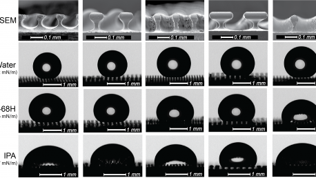 Oleophobic micro-mushrooms (JMM)