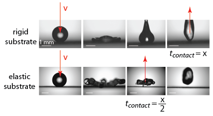 Droplet Impact on Flexible Substrates (SR)
