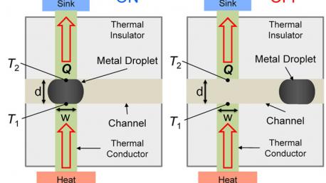 Liquid Metal Thermal Switch (APL)