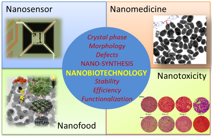 nano-bio-application-pic