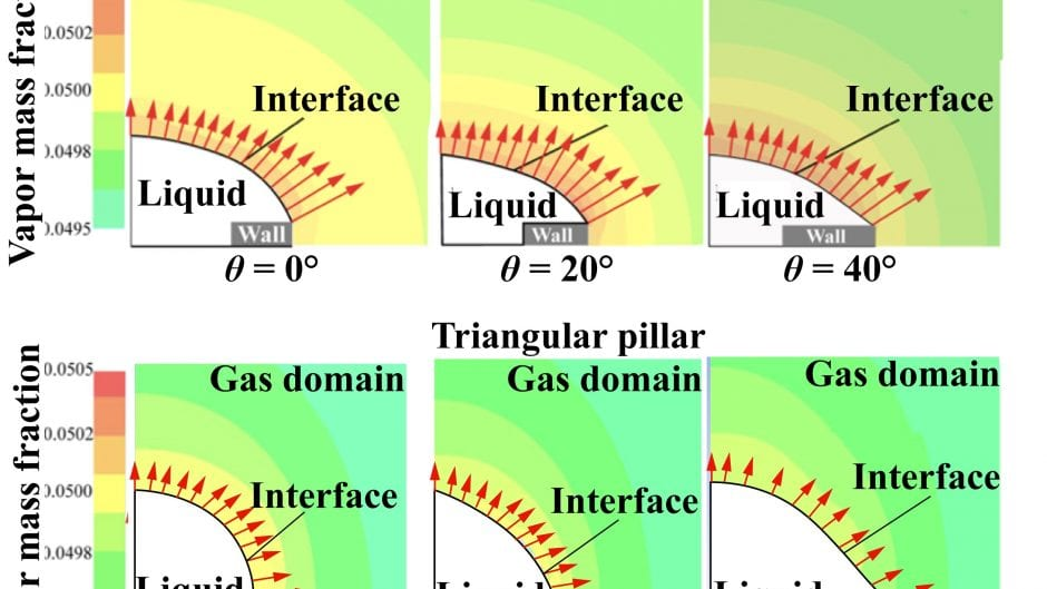 Numerical Investigation of Shape Effect on Microdroplet Evaporation