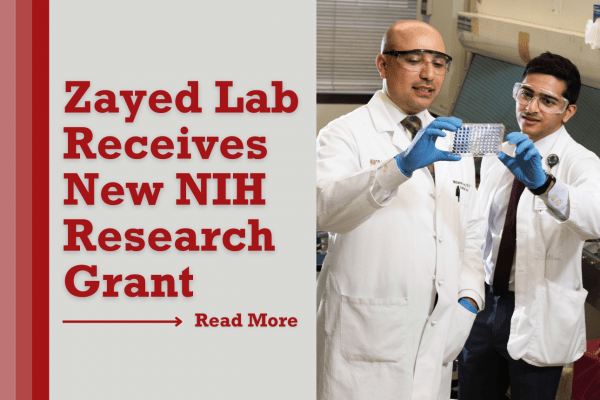 Zayed Lab Receives New NIH Research Grant for Studying Impact of Diabetes on Vascular Disease