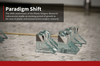 """Closeup image of glass knives on stone table with text overlay that reads: """"Paradigm Shift."""""""