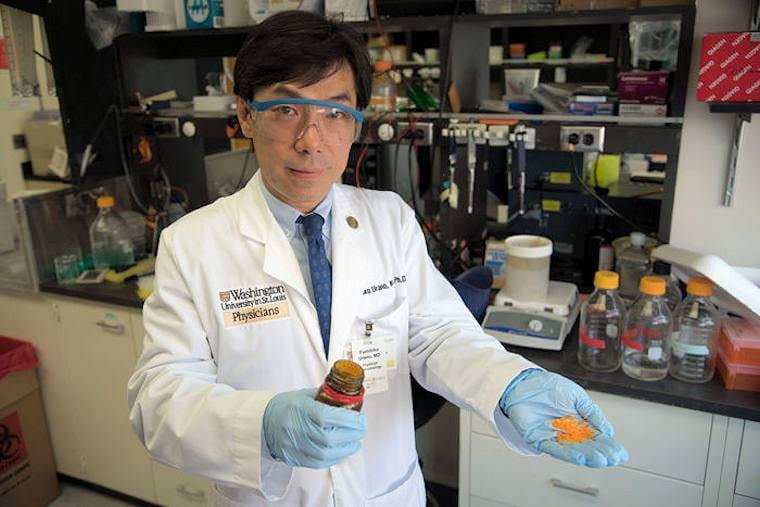 Fumi Urano, MD, PhD