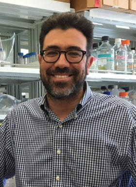 Brian Edelson, MD, PhD