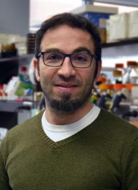 Hani Y. Suleiman, MD, PhD