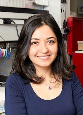 Ghazaleh Ashrafi, PhD