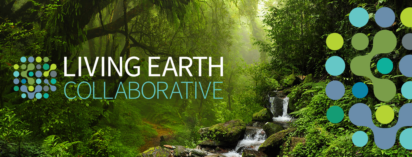 Incroyable Living Earth Collaborative: Center For Biodiversity | Washington University  In St. Louis