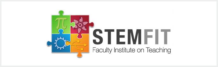 STEM FIT