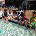teddies pool