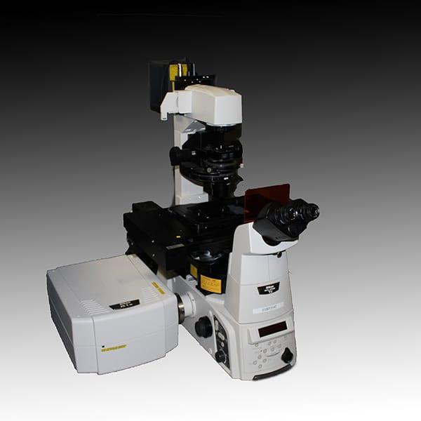 Light Microscopy | Center for Cellular Imaging (WUCCI) | Washington