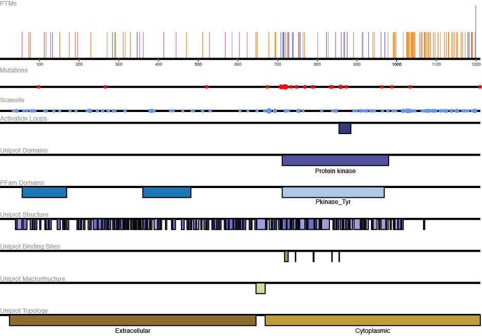 EGFR Protein View from ProteomeScout