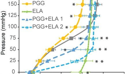 Pavey et al., Exp Mech, 2020