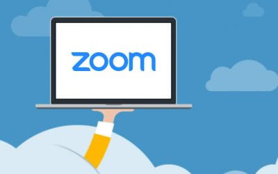 What's New in Zoom?
