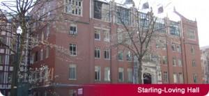 starling-loving-hall