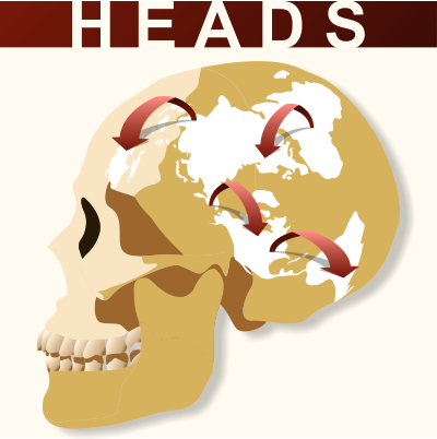 HEADS Logo small