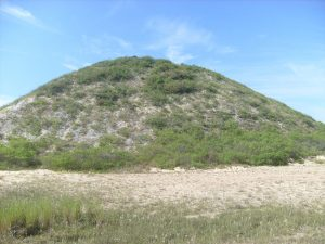 Picture of a shellmound