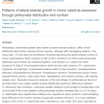 Paper titled Patterns of lateral enamel growth in Homo naledi as assessed through perikymata distribution and number.