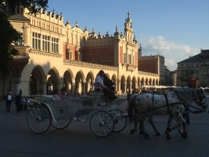 This is a view inside the town square of one of the horse-drawn carriages.
