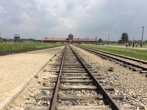 Train tracks leading into Auschwitz II - Birkenau, on which trains arrived daily, carrying thousands to their deaths.