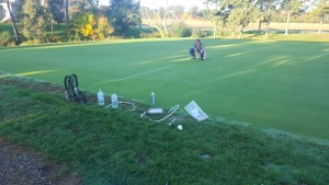 Dominic Petrella working on the research green at Hawks Next (10-19-16)