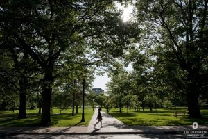 Ohio State oval with tree lined paths