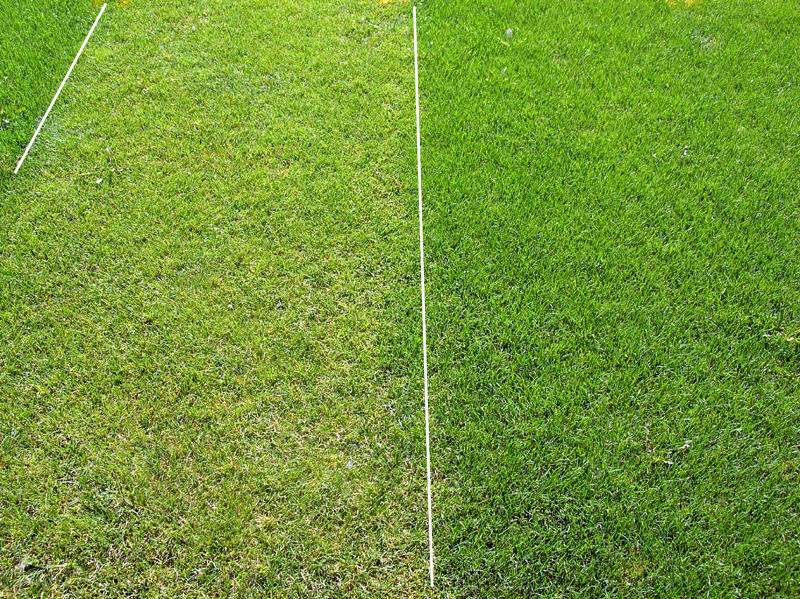 The Benefits Of Late Season Fertilizer Sports Turf Management
