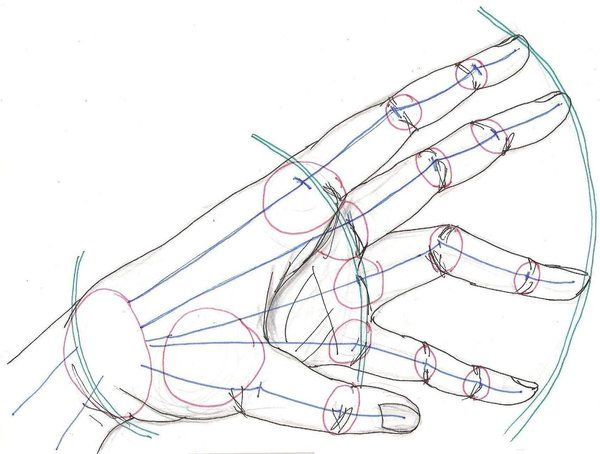 Instruction For Drawing Hands Design 3301