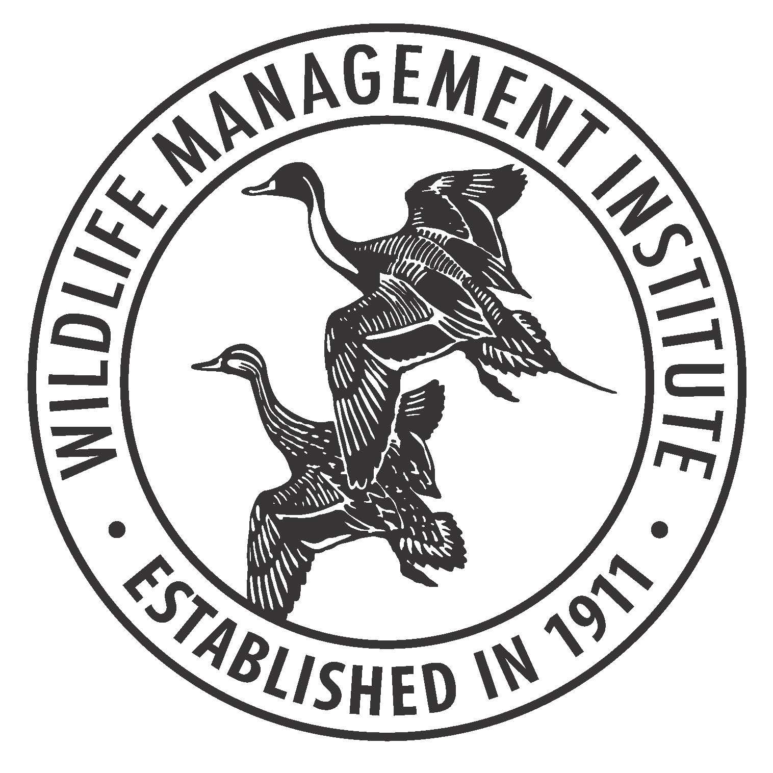 Image Result For Program Management
