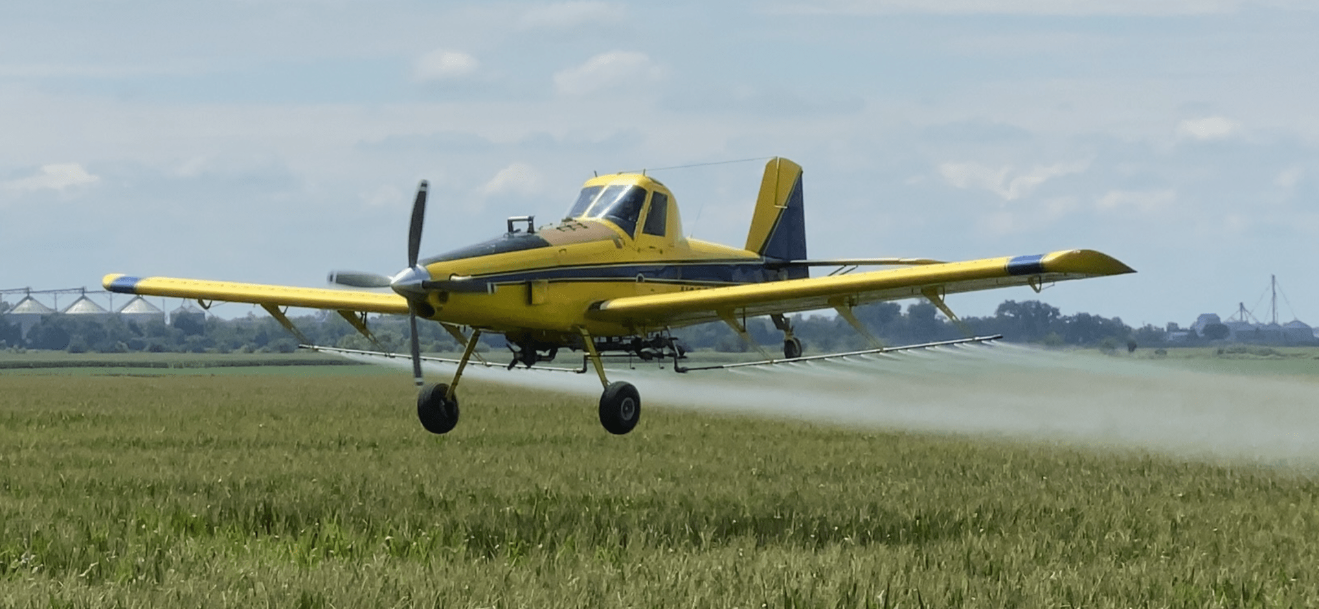 Airplane applying fungicide over a field of corn.