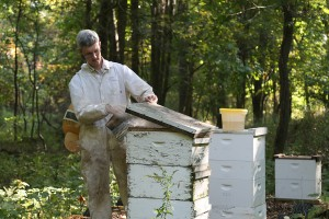 Reed Johnson studies bee colonies at OARDC to learn more about factors affecting bee health. Healthy bees are crucial for both agricultural production and the environment.