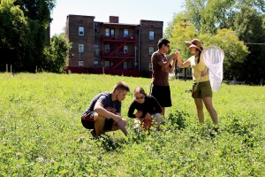 Graduate students in Mary Gardiner's lab survey vacant lots in Cleveland to determine the environmental benefits of different landscape treatments being studied.