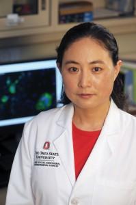 OARDC researcher Qiuhong Wang studies PED virus.