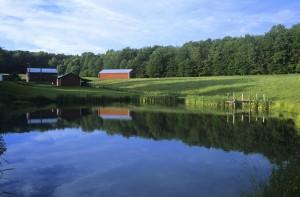 water quality farm2