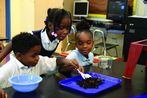 Thanks to a new 4-H program, many students at George Washington Carver STEM Elementary School in Cleveland now say science is their favorite subject.