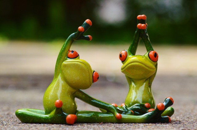 Two frogs stretching their muscles.